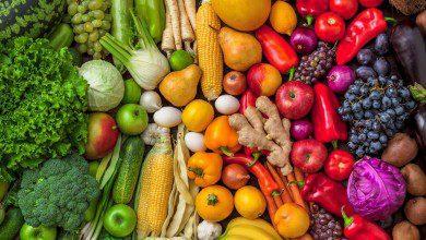Photo of يهدف لتحسين النوعية والإنتاج وحل المشاكل… دراسة علم التغذية في الجامعات الماليزية