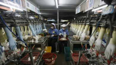 Photo of الولايات المتحدة تمنع استيراد المطاط من ماليزيا إثر اتهامات بالعمالة القسرية