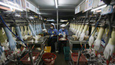 صورة الولايات المتحدة تمنع استيراد المطاط من ماليزيا إثر اتهامات بالعمالة القسرية