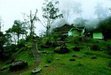 "Photo of بوكت لاروت ""ماكسويل"".. أقدم مرتفعات ماليزيا اكتشافاً"