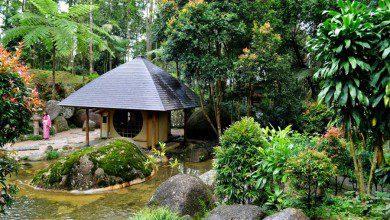 صورة القرية اليابانية.. ثوب الكيمونو في أدغال ماليزيا