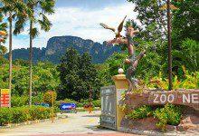 صورة بعد أن أوشكت على الإفلاس.. Zoo Negara تفتح أبوابها للزوار بخصم 20%