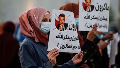 صورة في أكناف المولد النبوي.. طقوسٌ مختلفة وحملات نصرة عالمية
