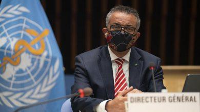 صورة منظمة الصحة العالمية: لقاح كورونا قد يكون جاهزاً نهاية العام