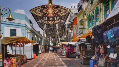 صورة ماليزيا تستأنف السياحة الداخلية في المناطق الخضراء