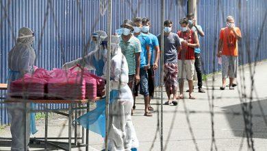 صورة منع العمال الأجانب من دخول ميناء كلانج بدون فحص كوفيد-19