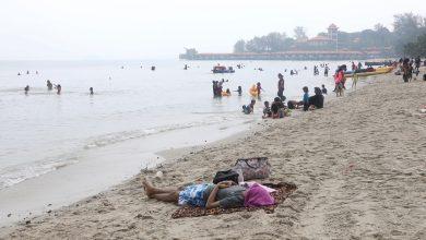 """صورة السلطات الماليزية تحقق في وجود تماسيح في مياه """"بورت ديكسون"""""""